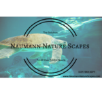 Naumann Nature Scapes