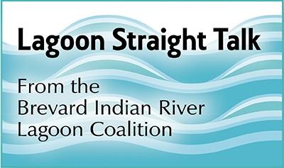 Lagoon_Straight_Talk_Sig-7325857f