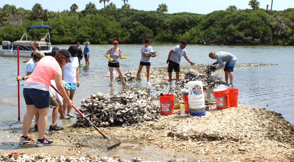 Brevard Zoo volunteers create oyster mats to help the lagoon