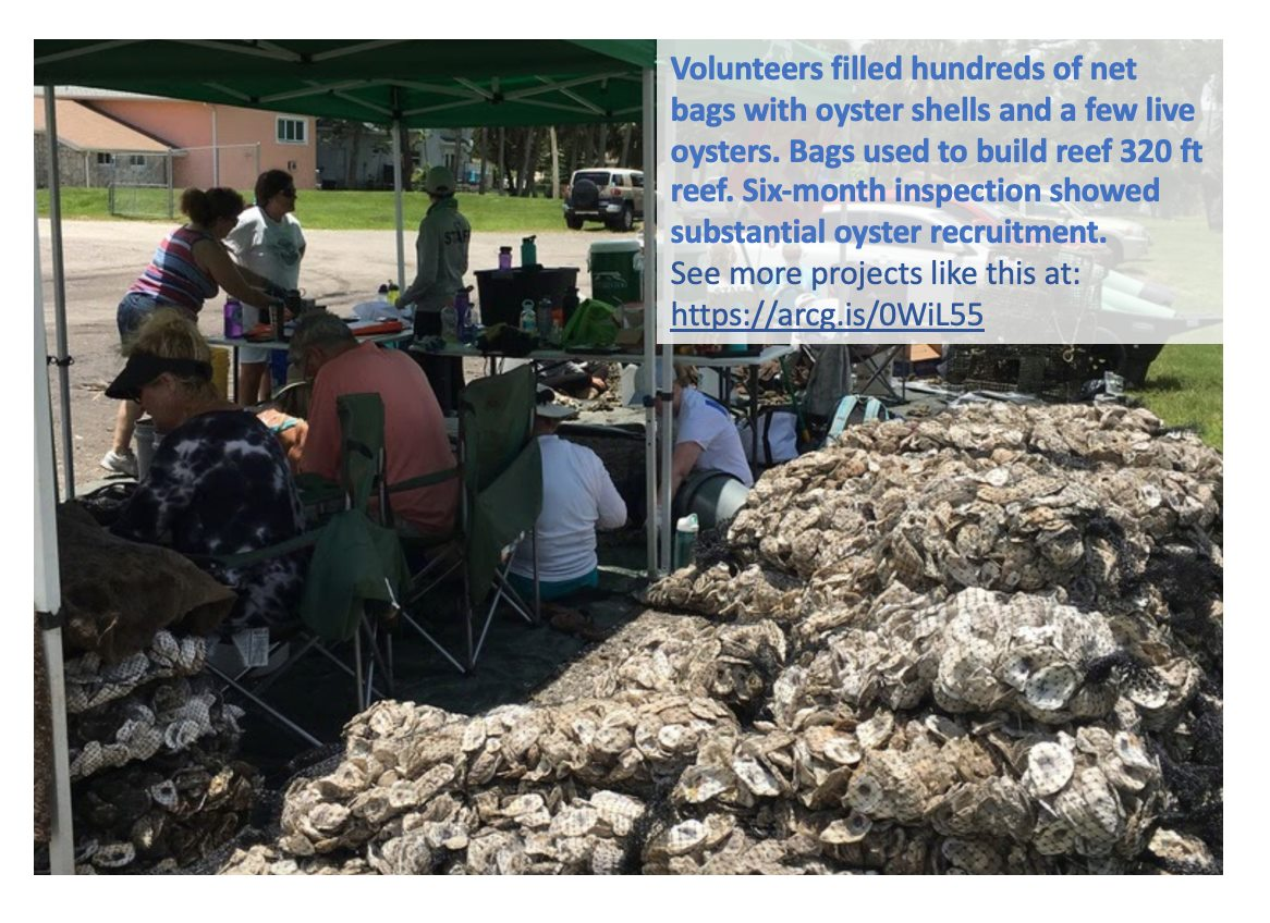Riverview Senior Home Oyster Reef project
