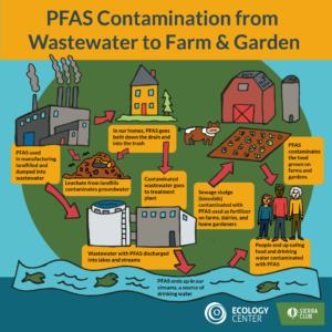 PFAS contamination graphic